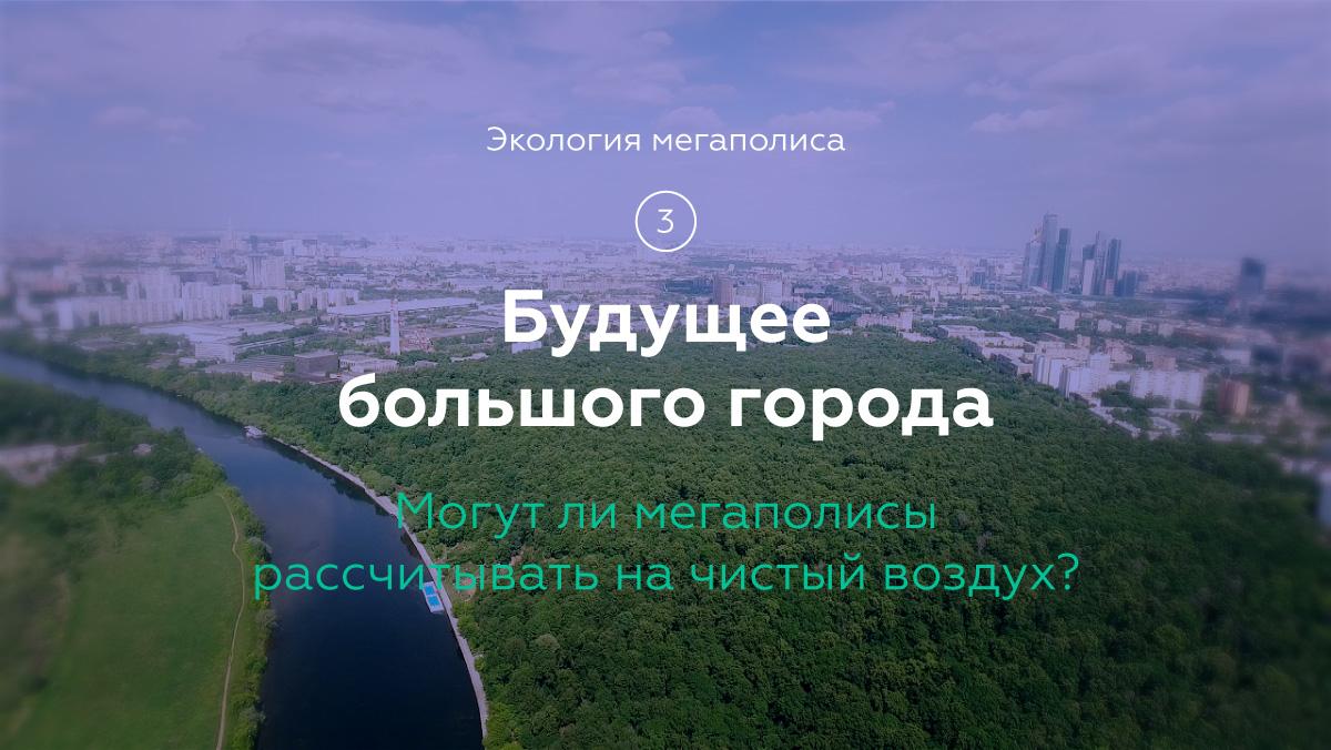 Экология в городе